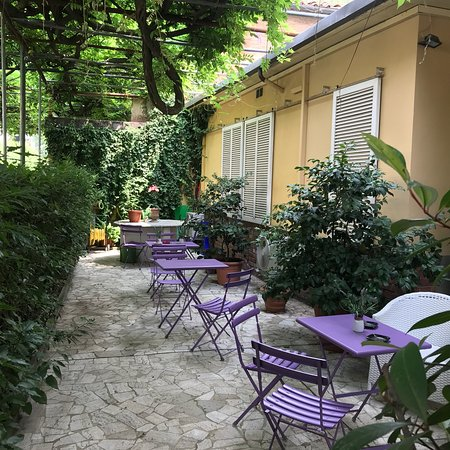 Hotel Stipino: Lovely yard with more than a hundred year old trees