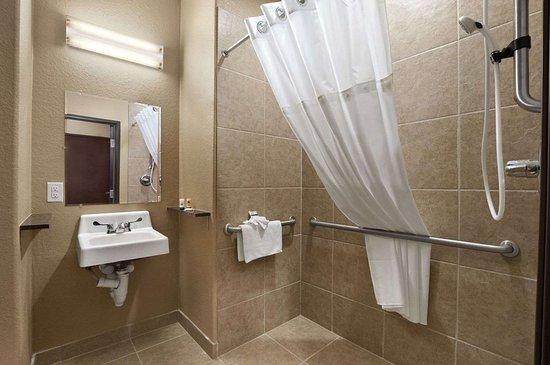 Microtel Inn & Suites by Wyndham Gonzales: ADA Bathroom