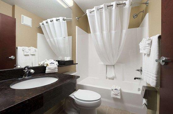 Microtel Inn & Suites by Wyndham Gonzales: Bathroom