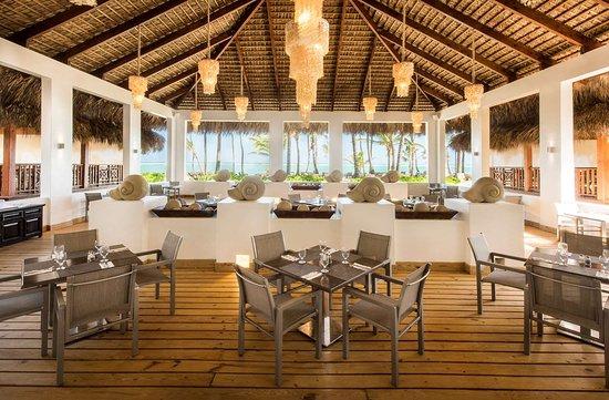 Occidental Punta Cana: OPCANA GAST