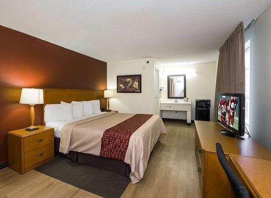 Red Roof Inn Cedar Rapids: Superior King