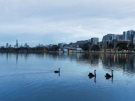 Pullman Melbourne Albert Park: Exterior view