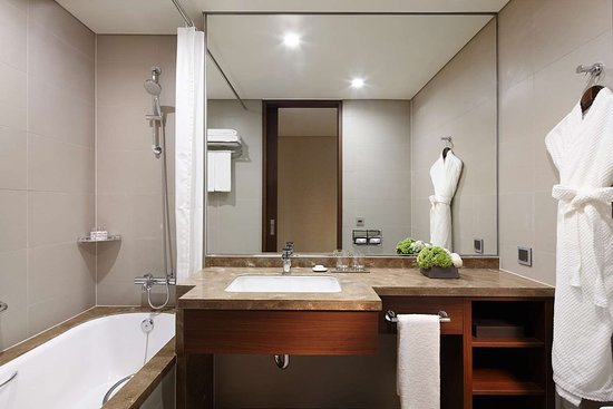Lotte City Hotel Ulsan: Bath Room