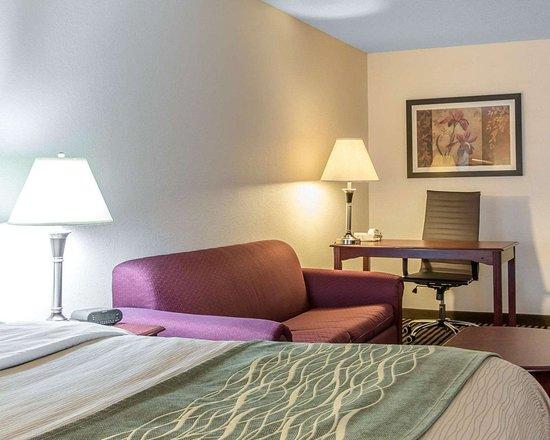 Comfort Inn Birmingham - Irondale: Guest room with sofa sleeper