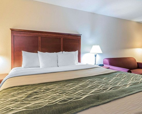 Comfort Inn Birmingham - Irondale: Guest room with king bed