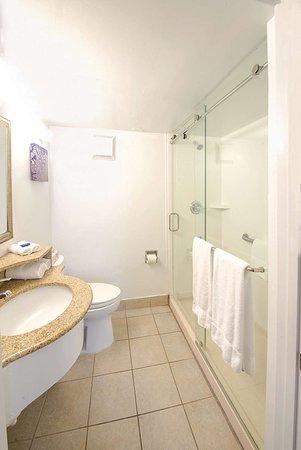 Ramada Plaza by Wyndham Virginia Beach: Bathroom