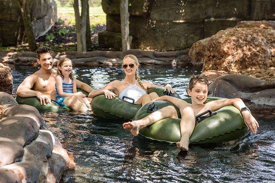 Hyatt Regency Hill Country Resort and Spa: Pool