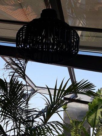 Hotel Royal Passeig de Gracia: The terrace