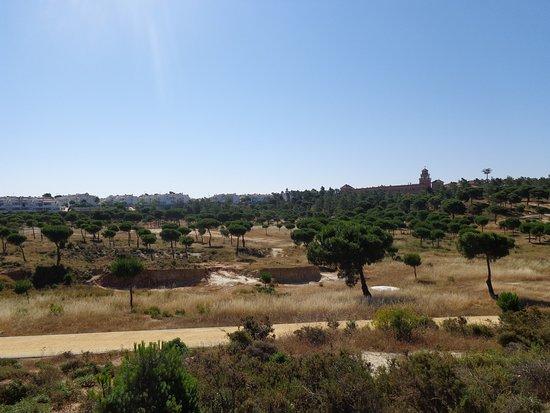 Parque El Camaleon