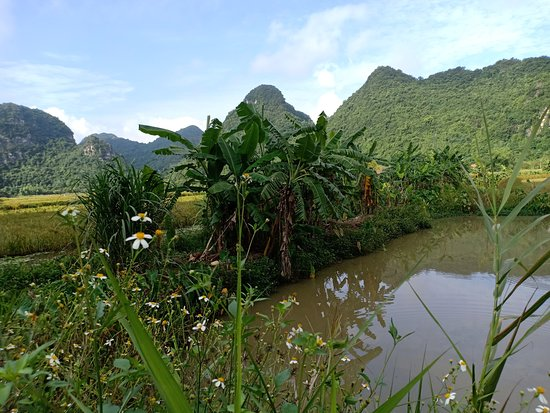 Hoa Lu - Mua Cave - Tam Coc - Bich Dong - Biking and Boat Day Trip from Hanoi: Scenic