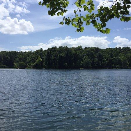 Bilde fra Pennyrile Forest State Resort Park