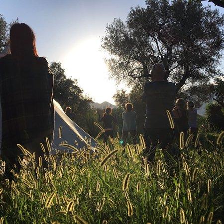 Sun Food Yoga: Early sunrise warming up exercises!