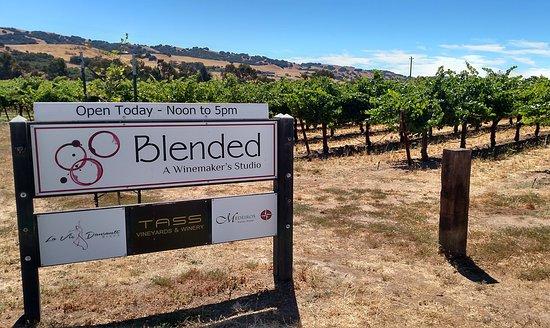 La Vie Dansante Wines: La Vie Dansante is one of three wineries at Blended, a Winemaker's Studio
