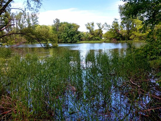 Woodbury, MN: A great place to walk!