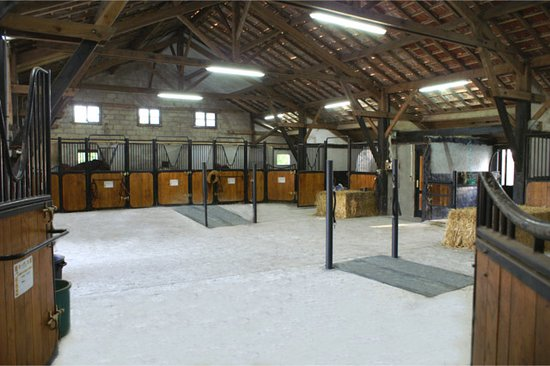 Saint-Brice-en-Cogles, France: pension pour chevaux