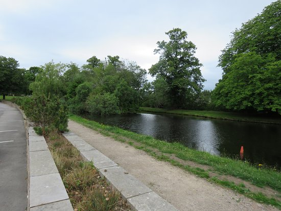 Mosset Tavern: The pond opposite