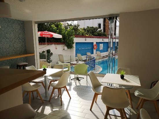 Bilde fra Koala Hotel