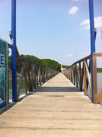Pandansari Mangrove Forest: Jembatan Depan