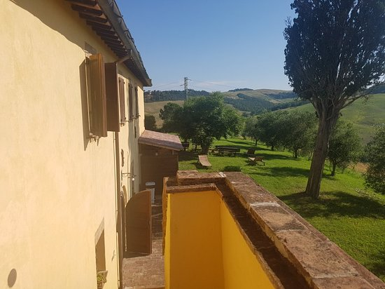 Podere Canapaccia: 20180616_085109_large.jpg