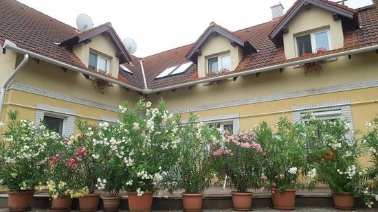 Hajdunanas, Венгрия: FB_IMG_1529776043408_large.jpg
