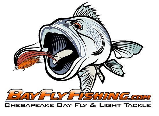 Gloucester, VA: Bay Fly Fishing, LLC provides guided fly and light tackle fishing charters on the Chesapeake.