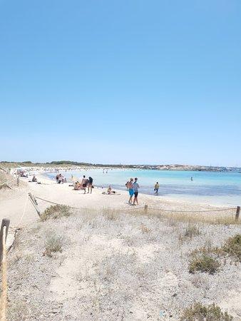 Valokuva: Playa de Ses Illetes
