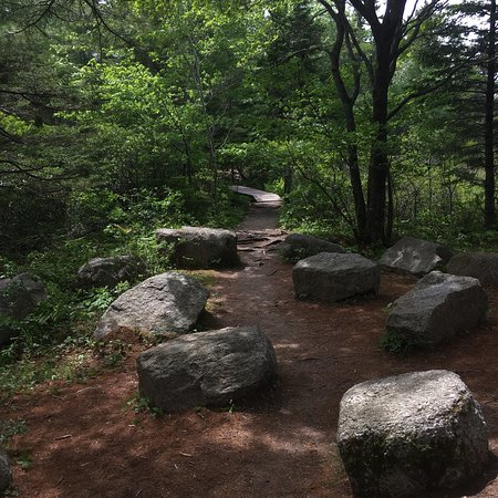 Bluff Wilderness Hiking Trails: Great day hiking