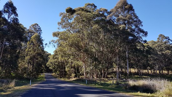 Killarney, Australia: Example of the beautiful views along Falls Drive