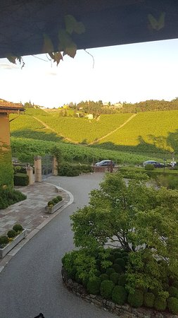 Villa winery and cellar