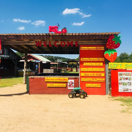 Sweet Berry Farm Marble Falls 2018 All You Need To