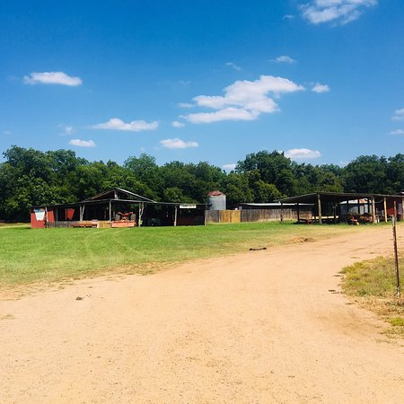 Sweet Berry Farm Marble Falls 2019 All You Need To