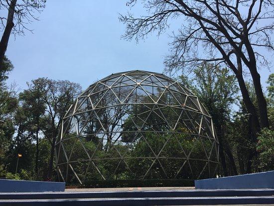 Parque Agua Azul