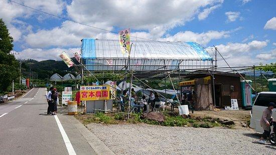 Yamanashi, Japan: DSC_3256_large.jpg