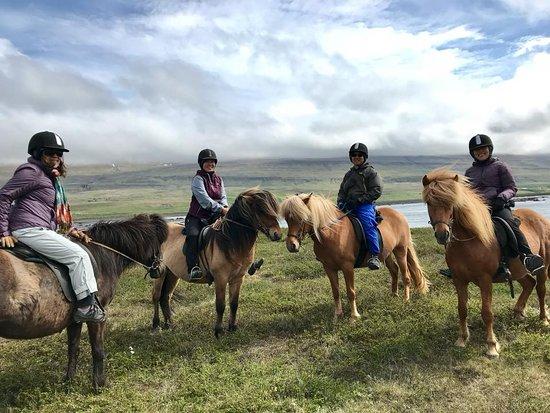 Nordic Visitor Tours: Horseback riding