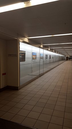 Gyoko-dori Underground Gallery