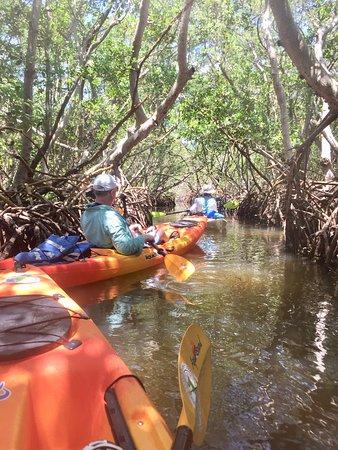 Best Kayaking Ever!