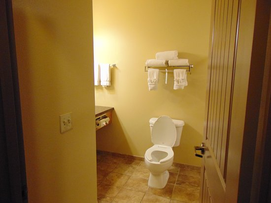 Arbuckle Lodge Gillette: Nice sized bathroom with door that wouldn't stay open. Room 334.