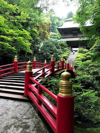 Unganji Temple: ここで皆さん写真を撮っていました。