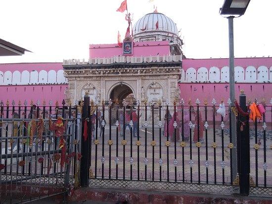 Deshnoke, Indien: Karni mata Temple