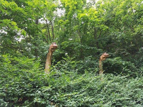 Rosamond Gifford Zoo 사진