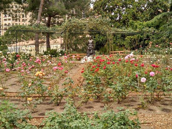 Princess Grace Botanical Garden Image