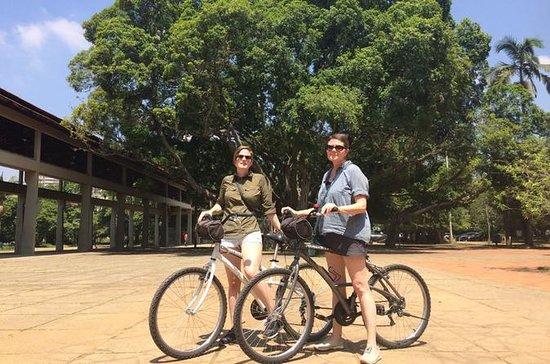 伊比拉普埃拉公园自行车之旅
