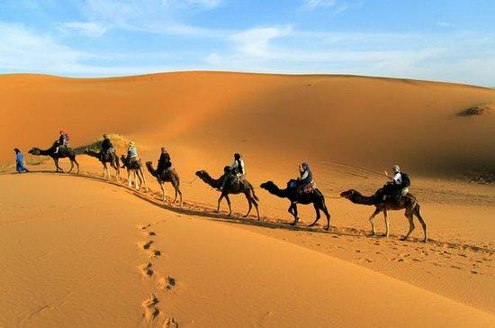 2 Days Zagora Desert Tour from...