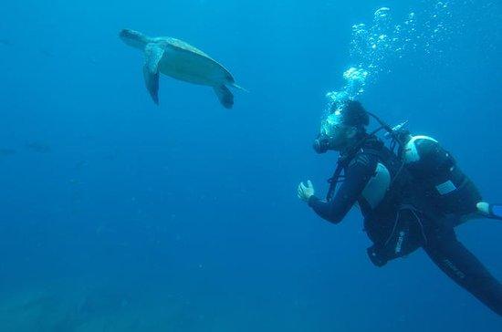 Scuba Diving per subacquei certificati