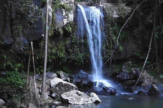Cachoeiras do Monte Tamborine...