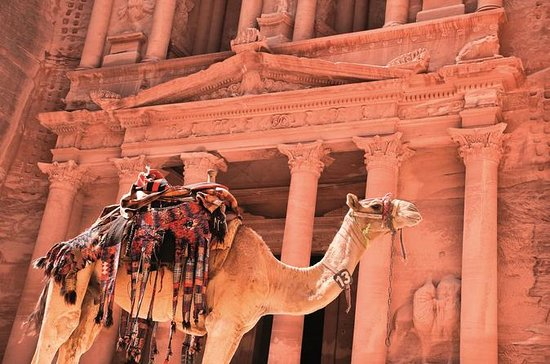 Private Petra One Day Tour From Aqaba...