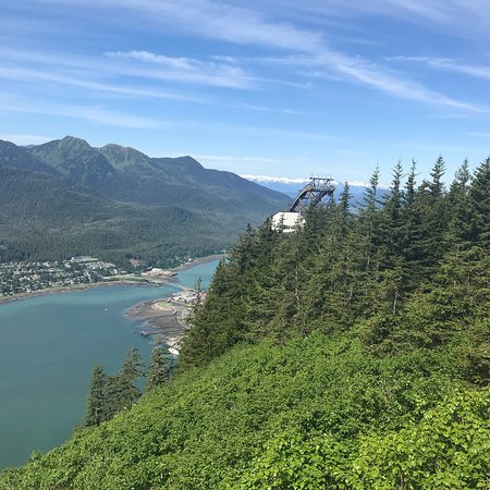 Mount Roberts Trail Juneau 2018 All You Need To Know
