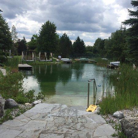 Bergheim, Austria: photo1.jpg