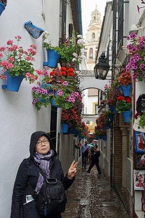 百花巷照片