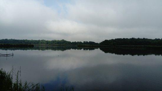 Backa Topola, Serbia: Jezioro